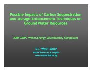 Possible Impacts of Carbon Sequestration and Storage ...