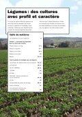 Technique des légumes - Page 2