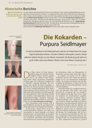 Die Kokarden – - Hauner Journal