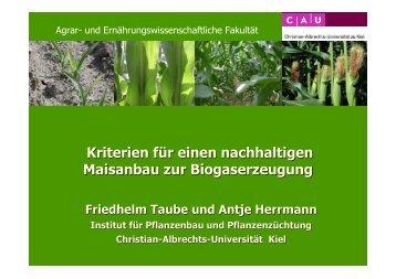 Kriterien für einen nachhaltigen Maisanbau zur Biogaserzeugung