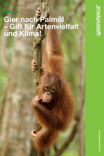 Gier nach Palmöl – Gift für Artenvielfalt und Klima! - Greenpeace