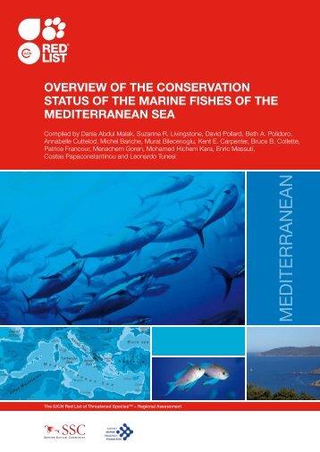 MEDITERRANEAN - Greenpeace