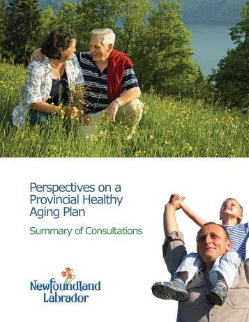 Perspectives on a Provincial Healthy Aging Plan - Government of ...