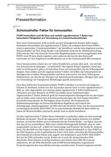 1245 Schicksalhafter Faktor fuer Immunzellen - Helmholtz-Zentrum ...