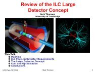 The Tesla Detector - High Energy Physics Group - University of ...