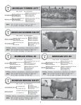 TOTAL PACKAGE BULL SALE - Hereford America - Page 3