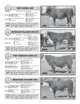 TOTAL PACKAGE BULL SALE - Hereford America - Page 6
