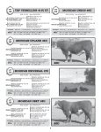 TOTAL PACKAGE BULL SALE - Hereford America - Page 7