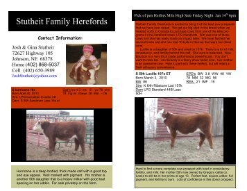 Stutheit Family Herefords - Hereford America