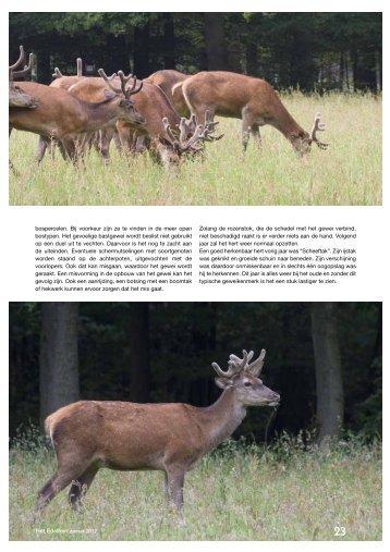 Download - Vereniging Het Edelhert
