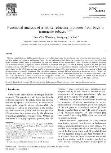 Functional analysis of a nitrite reductase promoter from birch in - Elmu