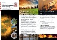 Klimaschutz durch Holznutzung [PDF, 2,4 MB] - Hessen-Forst
