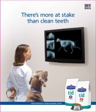 There's more at stake than clean teeth - HillsVet