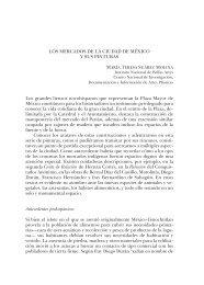 Los mercados de La ciUdad de méxico y sUs PinTUras Los grandes ...