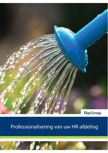 Professionalisering van uw HR-afdeling - Hay Group