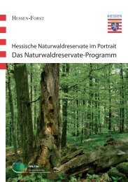 PDF, 3,4 MB - Hessen-Forst