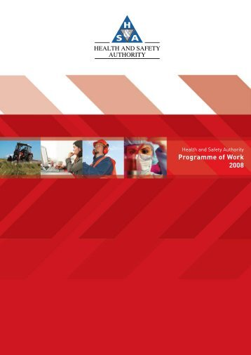 Programme of Work 2008.pdf - Health and Safety Authority
