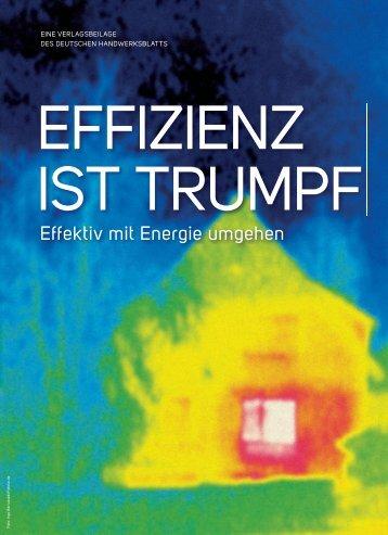DHB Sonderbeilage Energie als PDF-Datei - handwerksblatt.de ...