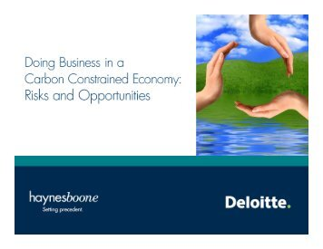 Doing Business in a Carbon Constrained Economy - Haynes and ...