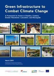 Green Infrastructure to Combat Climate Change: A Framework for ...