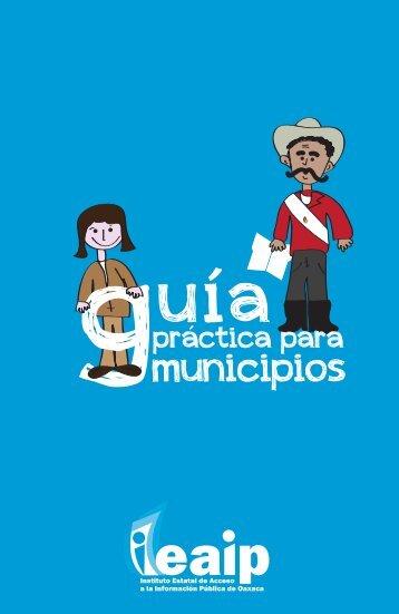02-cotaipo-Guía práctica para municipios.pdf