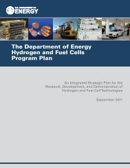 The Department of Energy Hydrogen and Fuel Cells Program Plan