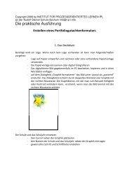 Die praktische Ausführung - ipl.info