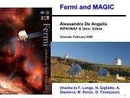The MAGIC-Fermi Collaboration