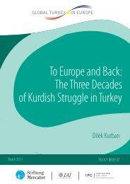 The Three Decades of Kurdish Struggle in Turkey