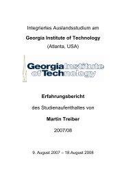 Martin Treiber - Institut für Angewandte und Experimentelle ...