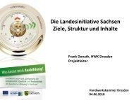 Die Landesinitiative Sachsen Ziele, Struktur und Inhalte