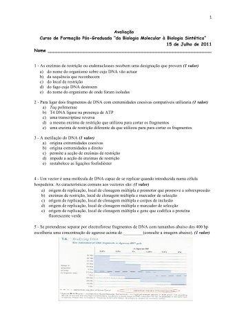 documento em PDF - IBMC