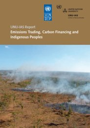 Emissions Trading, Carbon Financing and Indigenous ... - UNU-IAS