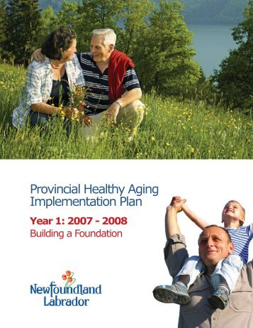 Provincial Healthy Aging Implementation Plan - Government of ...