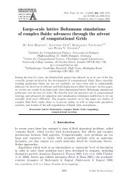 Large-scale lattice Boltzmann simulations of complex fluids ...