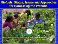 Biofuels:Status, Issues and Approaches for Harnessing the ... - Icrisat