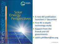 Progress with Renewable Energy Roadmaps - IEA