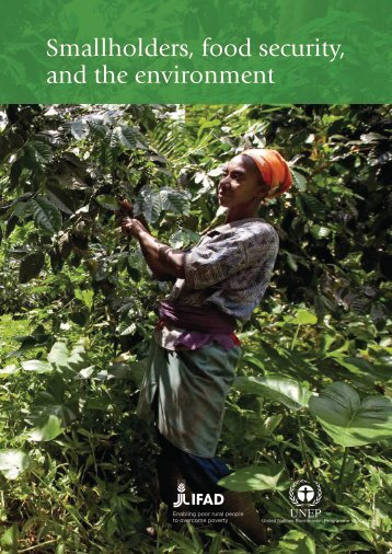Smallholders, food security, and the environment - IFAD