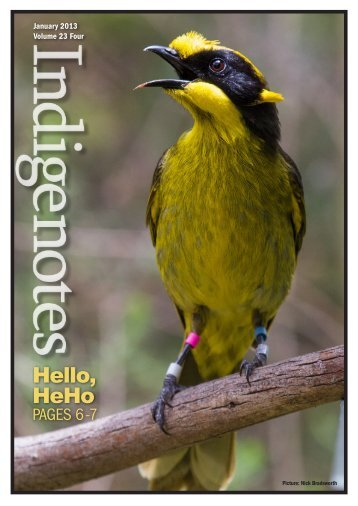 Hello, HeHo - Indigenous Flora and Fauna Association