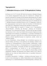 Tagungsbericht - Institut für Geotechnik und Markscheidewesen - TU ...
