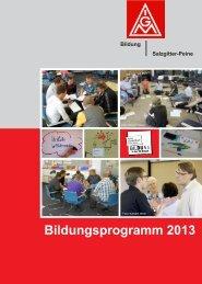 Bildungsprogramm 2013 - IG Metall Salzgitter-Peine