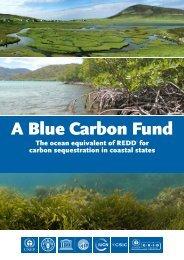A Blue Carbon Fund - GRID-Arendal