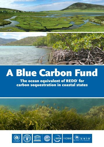 A Blue Carbon Fund - GRID-Arendal