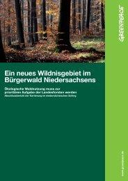 Abschlussbericht Kartierung Solling - Greenpeace