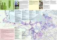 udeepbeusareenetwork (jub ) - Green Map System