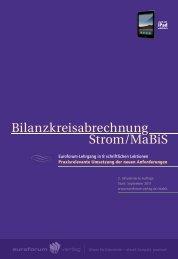 Bilanzkreisabrechnung Strom/MaBiS - IIR Deutschland GmbH