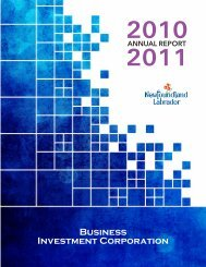 Business Investment Corporation - 2010-11 Annual Report