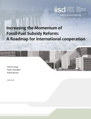 Increasing the momentum of fossil-fuel subsidy reform: a roadmap ...
