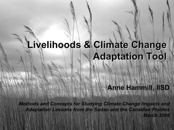 Livelihoods and Climate Change Adaptation Tool - International ...