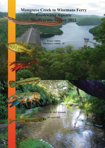 Mangrove Creek to Wisemans Ferry Aquatic Survey Final Report